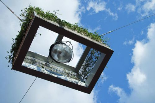Hanging Streetlight Planters Appear in the Netherlands1