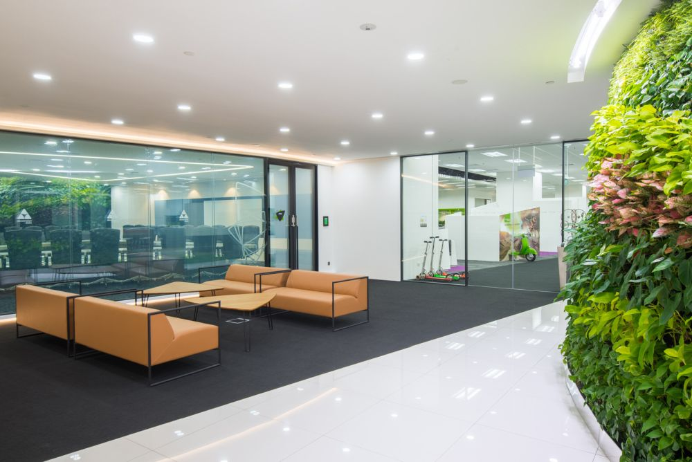 green office interior simple small office view in gallery green walls cool design accent for offices with personality