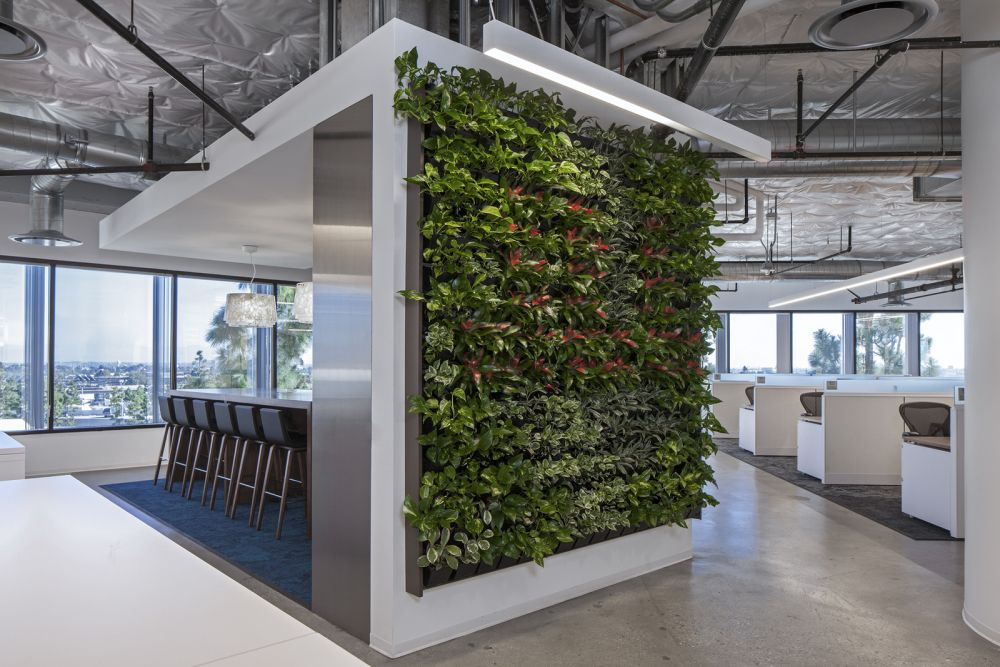 living walls of jet