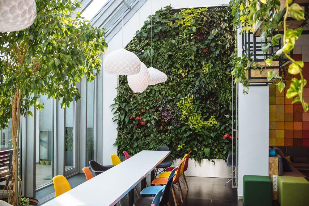 green office interior concept green walls cool design accent for offices with personality