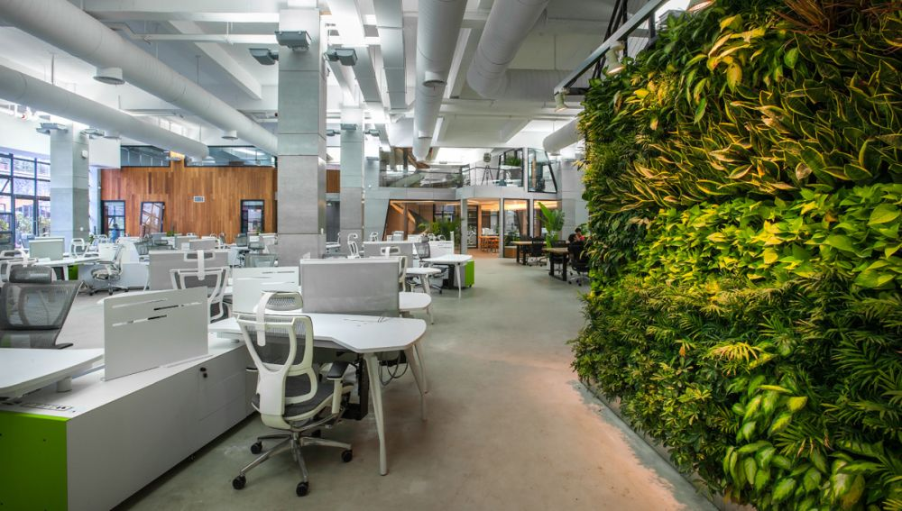 green office design. View In Gallery Green Office Design G