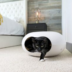Cat Cave – Small Dog House