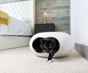 Perfect ... Your Catu0027s Litter Box · Morphing Cabinet Morphing Cabinet · Modern  Furniture For Cats And Dogs With Style And Panache
