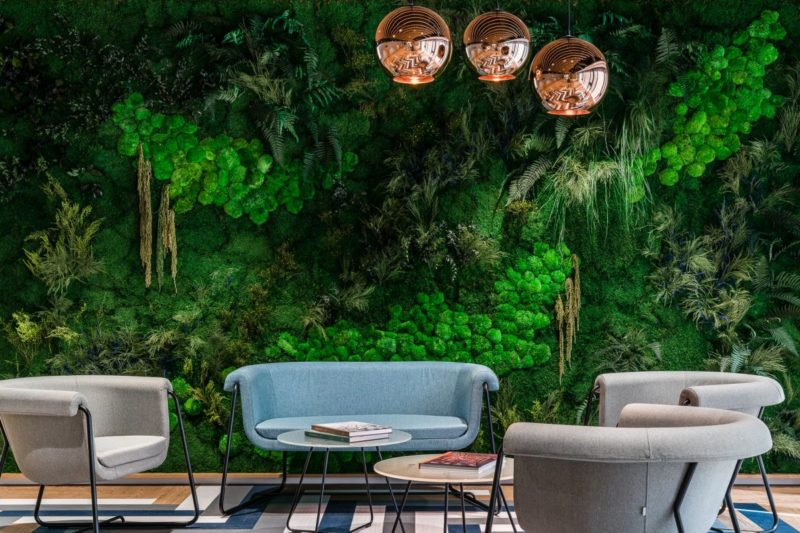 Use Green Walls to Create a Healthier Environment Indoors or Outside