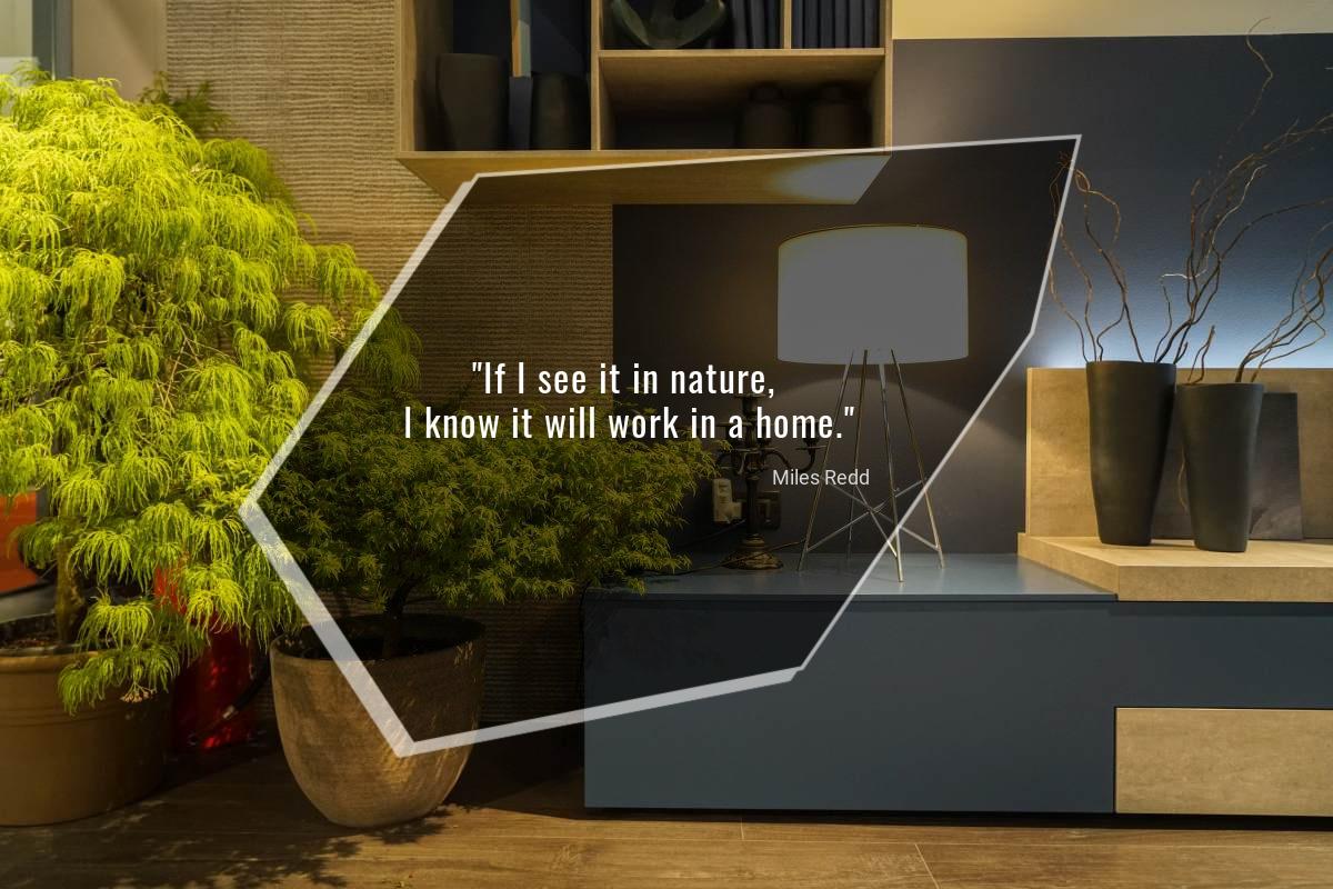 If I see it in nature, I know it will work in a home - Miles Redd